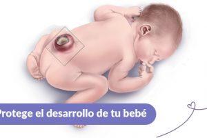 Ácido fólico Maternar