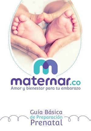 Guía Prenatal Maternar